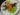 Asiatiska marinerade grillspett av fläskkarré med SofrittoRagu